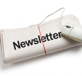 Newsletter-Subscription-Business-Model